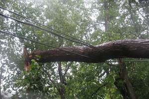 On Orchard Hill Road in Harwinton, a tree limb hangs on a power line.