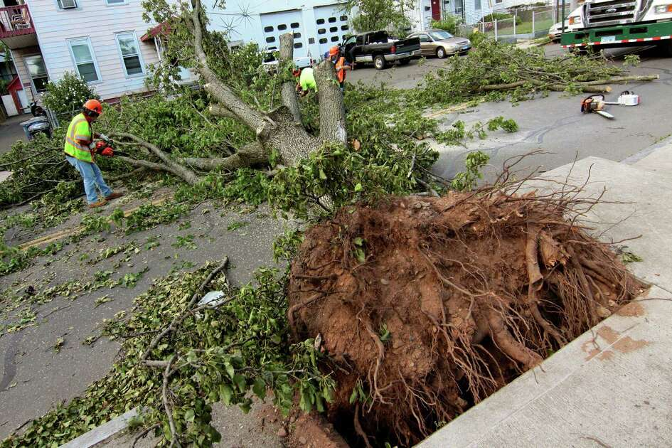 Workers remove a tree that landed across Lombard Street in New Haven, Conn., on Wednesday Aug. 5, 2020.