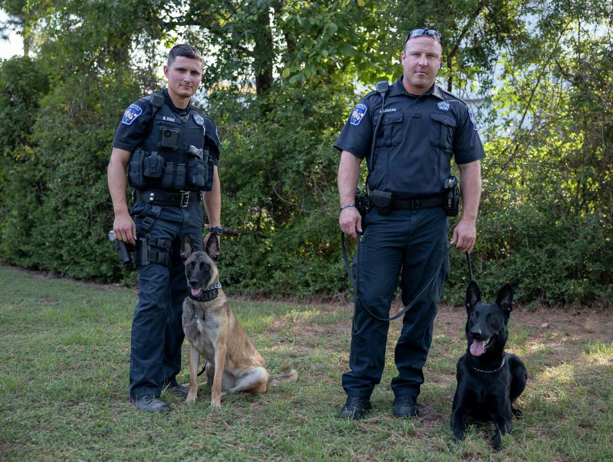 Deputy Dustin Cole and Deputy Justin Loucks pose for a portrait with their K-9 partners, Marlin, left, and Rambo at the Montgomery County Precinct 3 Constable's Office in The Woodlands, Wednesday, August 4, 2020. Rambo and Marlin were both recently added to their new K-9 force.