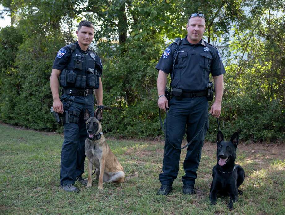 Deputy Dustin Cole and Deputy Justin Loucks pose for a portrait with their K-9 partners, Marlin, left, and Rambo at the Montgomery County Precinct 3 Constable's Office in The Woodlands, Wednesday, August 4, 2020. Rambo and Marlin were both recently added to their new K-9 force. Photo: Gustavo Huerta, Houston Chronicle / Staff Photographer / Houston Chronicle © 2020