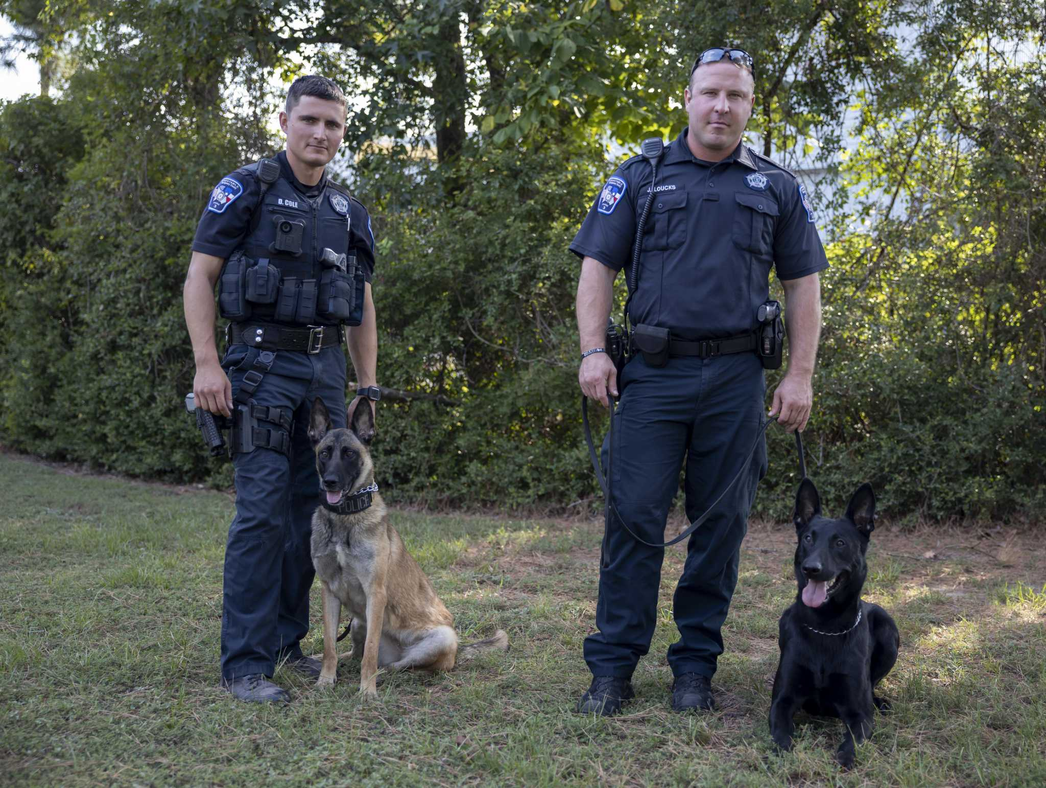 2 K-9s added to Montgomery County Pct. 3 Constable's narcotics, patrolling divisions