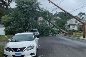 A fallen tree brought down  power lines and damaged a transformer on Dwight Place in East Haven, cutting power to residents of the five-unit Cornerstone Walk condominium complex. As of Thursday morning, they were still without power.