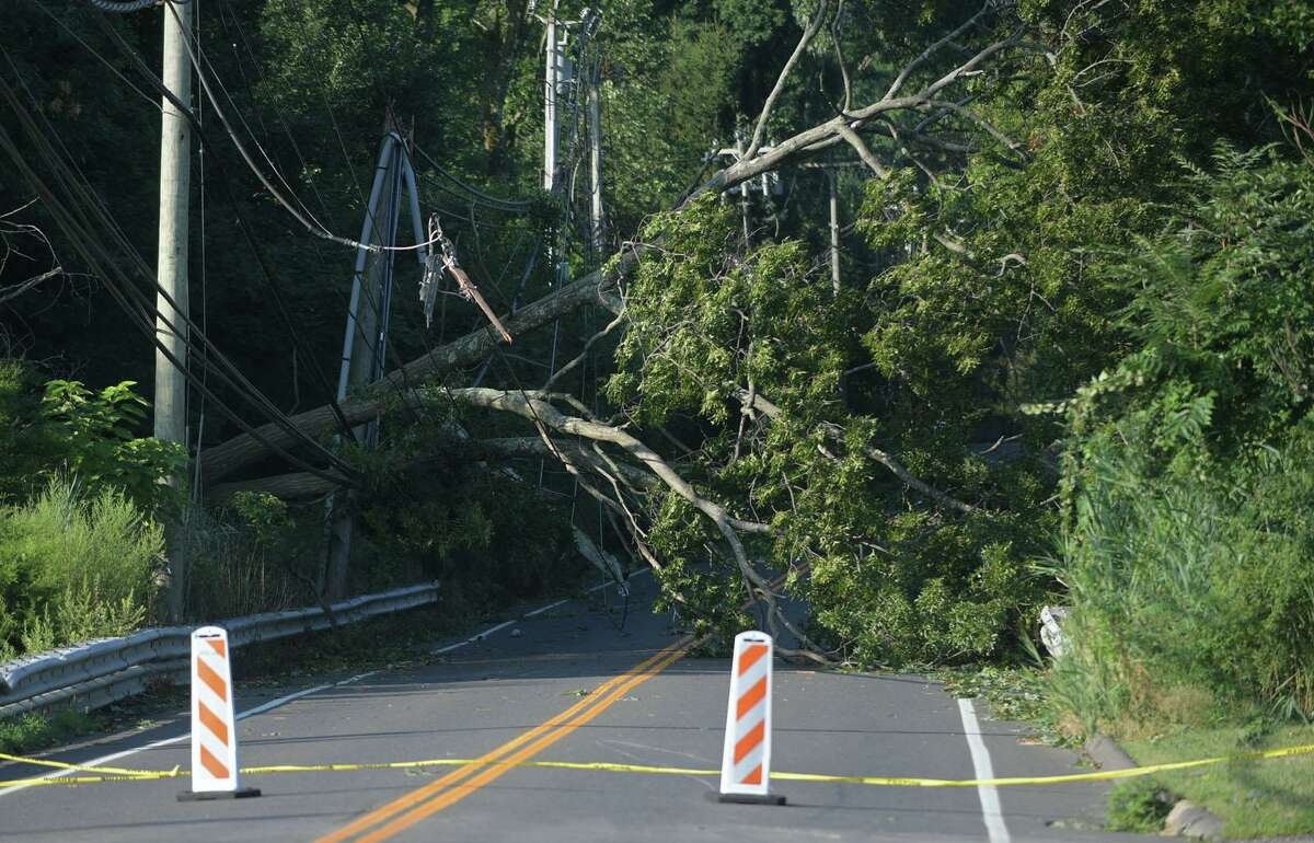Damage wrought by tropical storm Isaias Wednesday, August 5, 2020, which brought down trees with wind gusts up to 70 miles per hour in Norwalk, Conn.
