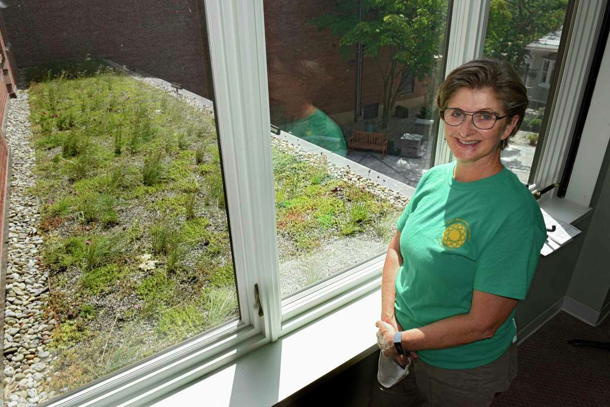 Caroline Brooks stands next to a window looking out on the rooftop garden at the First Reformed Church on Wednesday, Aug. 5, 2020 in Schenectady, N.Y. Caroline heads a committee that tries to help the very diverse congregation band together to curb plastic pollution, landfill overflow and dangers posed by PPE that's just tossed on the street or in parking lots. (Lori Van Buren/Times Union)