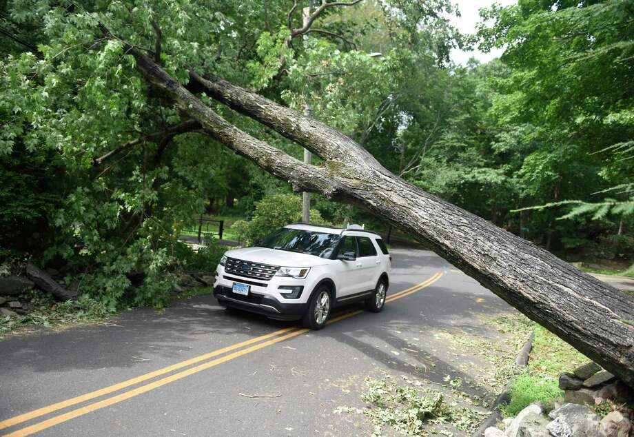 A vehicle drives beneath a tree blocking the road on Bible Street in the Cos Cob section of Greenwich, Conn. Thursday, Aug. 6, 2020. Tuesday's powerful storm downed trees and power lines and power remains out for thousands of Eversource customers throughout the region. Photo: Tyler Sizemore / Hearst Connecticut Media / Greenwich Time