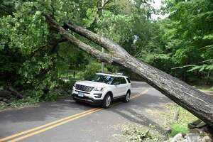 A vehicle drives beneath a tree blocking the road on Bible Street in the Cos Cob section of Greenwich, Conn. Thursday, Aug. 6, 2020. Tuesday's powerful storm downed trees and power lines and power remains out for thousands of Eversource customers throughout the region.