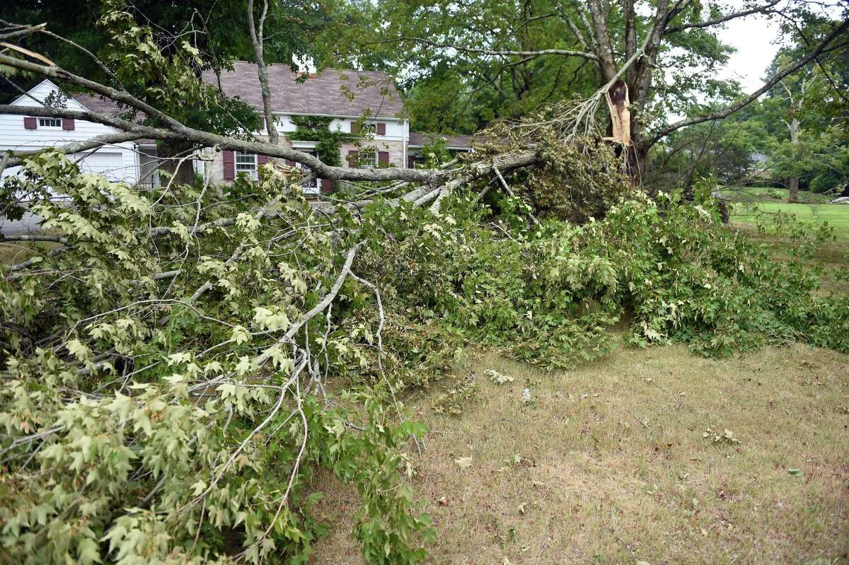 A large section of tree lies on the ground in the front yard of a home on Orange Center Road in Orange on August 7, 2020.