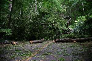 Grumman Avenue near Cranbury Park remained closed Thursday, August 6, 2020, in Norwalk, Conn. Residents continue to struggle with power outages following the tropical storm Tuesday.