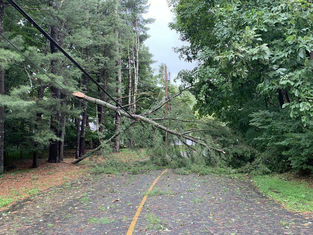 A resident of Rivergate Drive submitted this photo of a tree down through the SeeClickFix app.