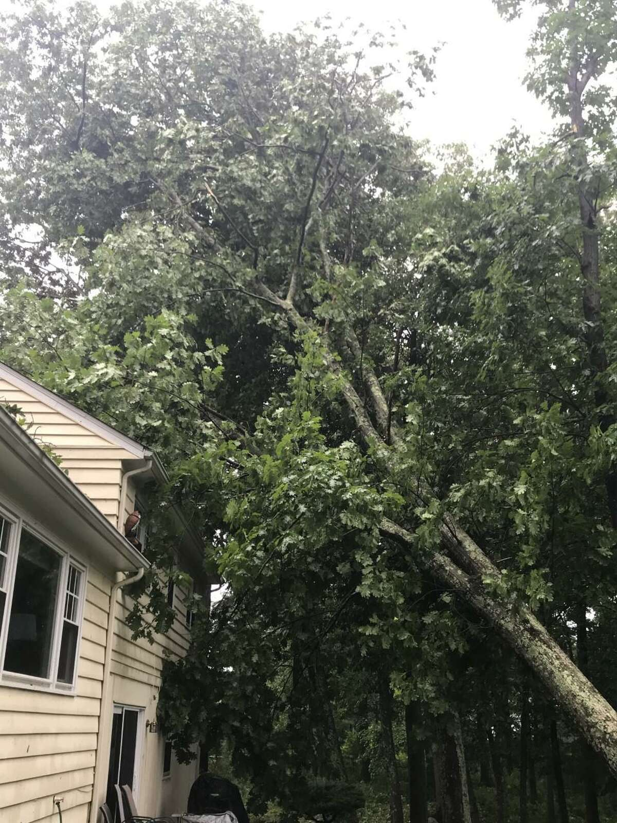 A tree lies against a home on Nod Hill Road in Wilton knocked over by high winds during Tropical Storm Isaias on Aug. 4.