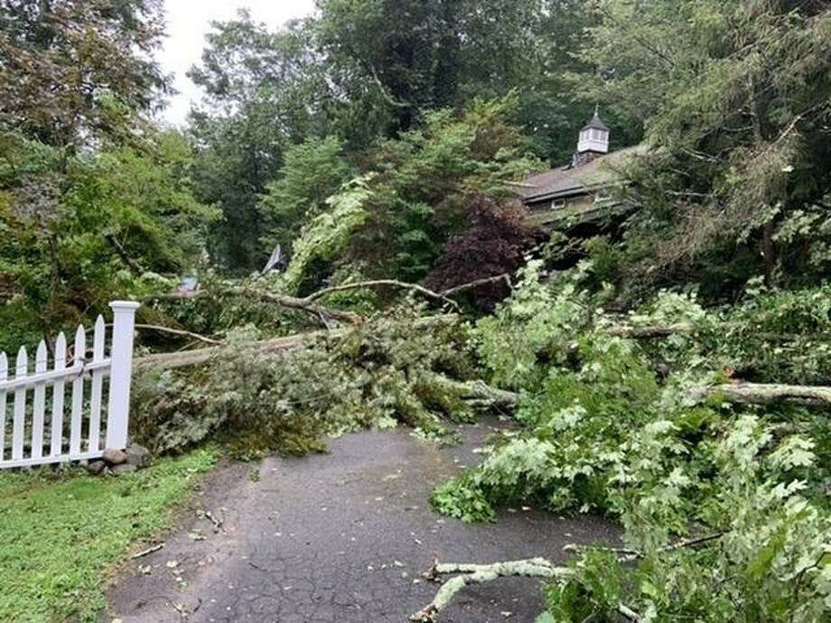 Severe tree damage on Godfrey Lane was reported on the SeeClickFix app after Tropical Storm Isaias on Aug. 4, 2020. Photo: Contributed Photo / Wilton Bulletin Contributed
