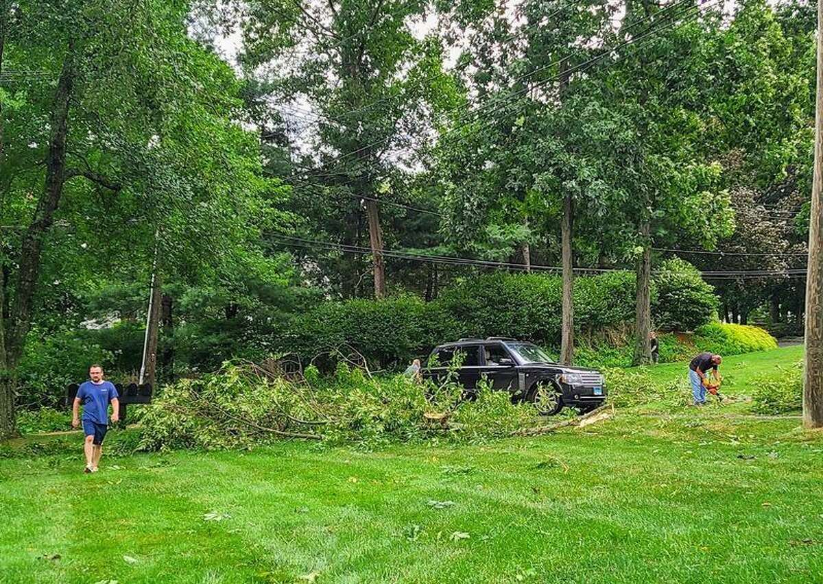 Neighbors helped clear a fallen tree and open up a portion of Skunk Lane.