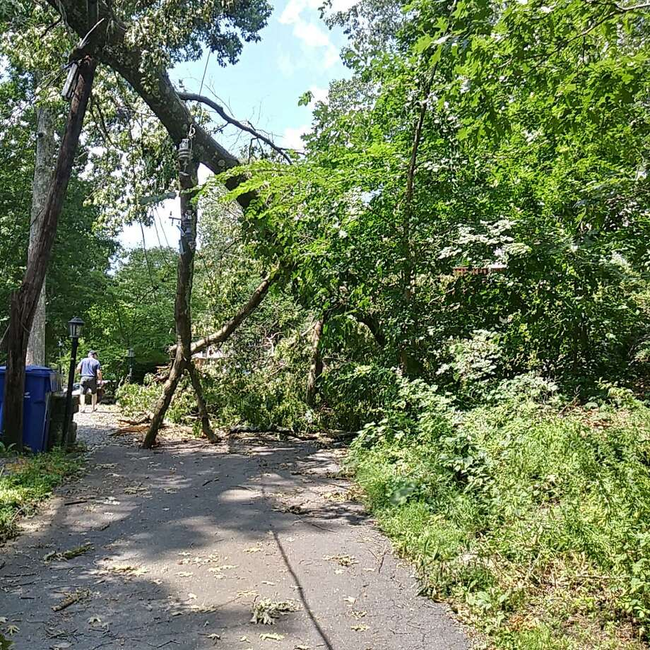 A downed tree has blocked access to Hunter Road in Danbury for days. Photo: / Contributed