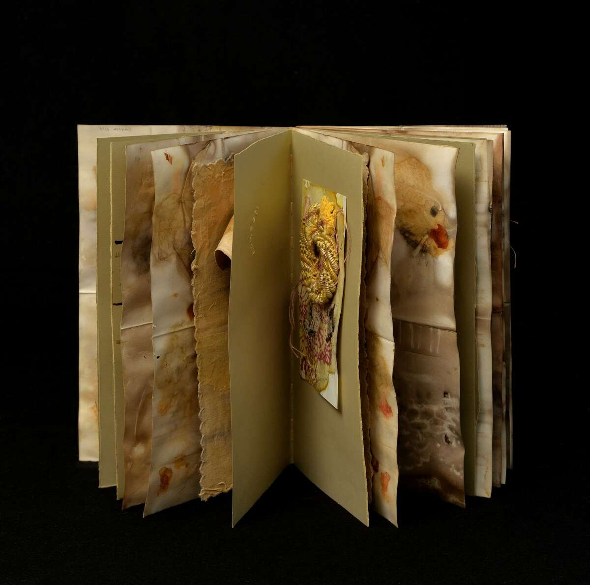 Traces of leaves and flowers transferred to the surfaces of cloth and paper. The prints are assembled to become pages in books, stitched upon and then together. images by Douglas Baz