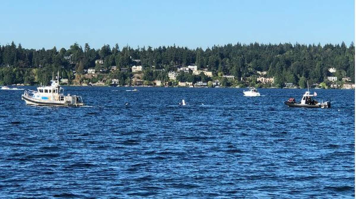 Divers search for a man missing in Lake Washington.