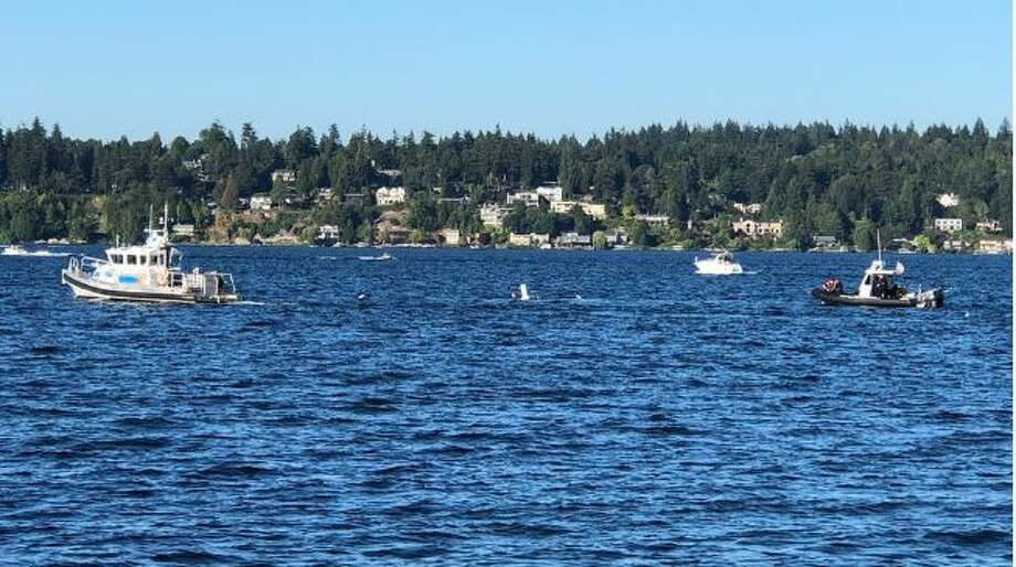 Divers search for a man missing in Lake Washington. Photo: Seattle Fire