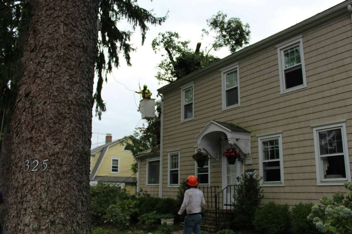 Friday afternoon, a crew removes one of two large trees that landed on the Main Street, New Canaan, home of Chris Hussey during Tropical Storm Isais Tuesday.