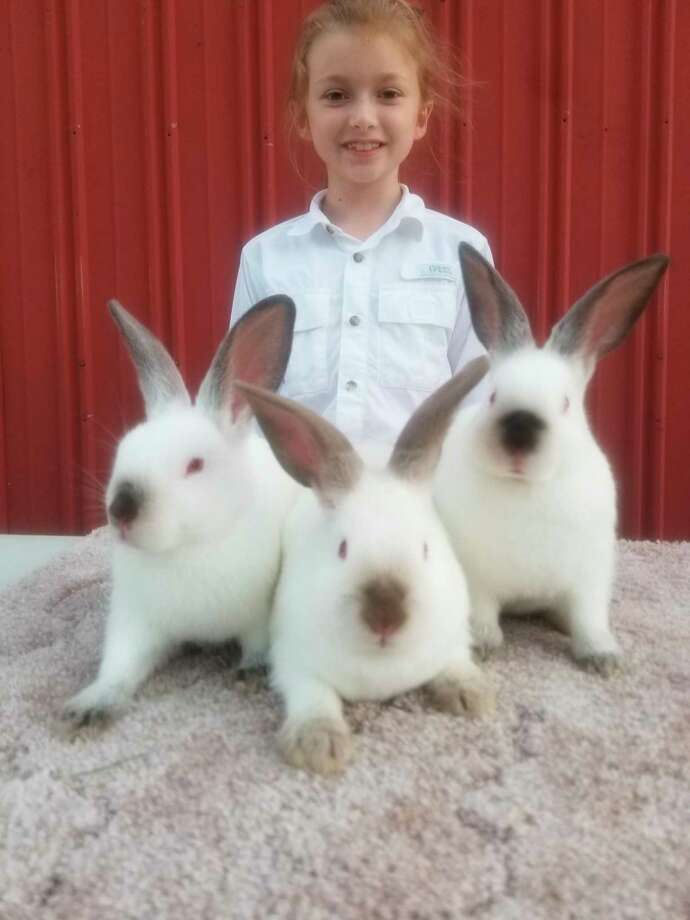 Bethani Schuiteman, 9, submitted a record 31 entries for this year's 4-H virtual showcase and auction.(Courtesy Photo/Ali Olson)