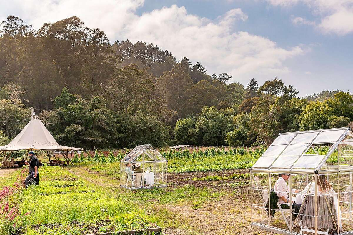 Diners sit in small greenhouses for San Francisco three Michelin-starred restaurant Quince's lunch series at Fresh Run Farm in Bolinas.