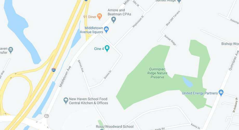 A man was shot Tuesday night near Donna Drive in New Haven, according to police. Photo: Google Maps
