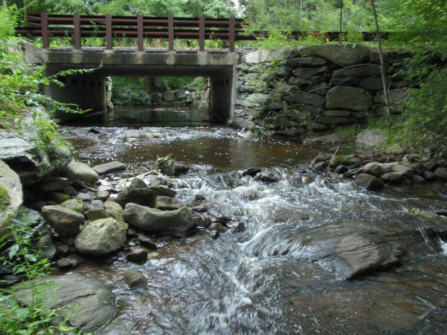 On the same day the photo at Merwin Meadows was taken, the Comstock Brook flows full of cold, clean water at Nod Hill Road. Photo: Contributed Photo / Trout Unlimited / Wilton Bulletin Contributed