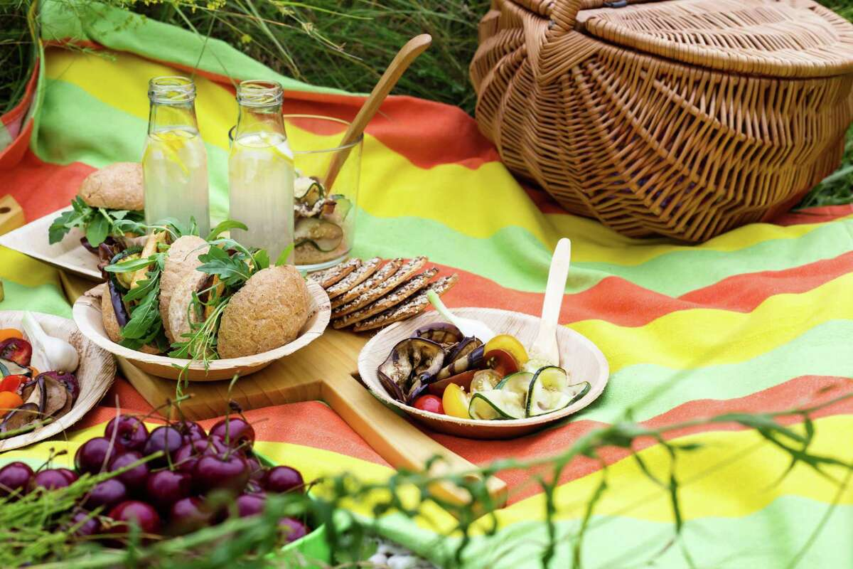 Healthy picnic with fresh vegan dishes in summer park.