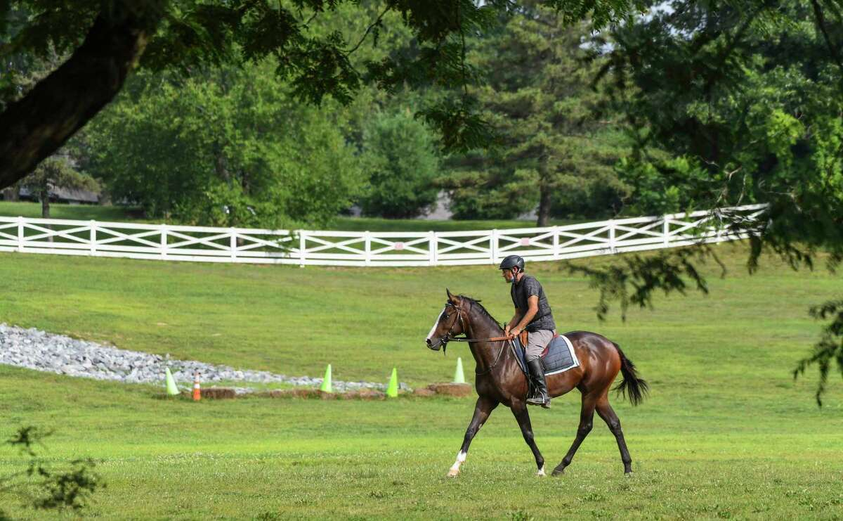A horse is schooled in the open area east of the barns at the Oklahoma Training Center Thursday Aug.13, 2020 adjacent to the Saratoga Race Course in Saratoga Springs, N.Y. Photo by Skip Dickstein/Special to the Times Union