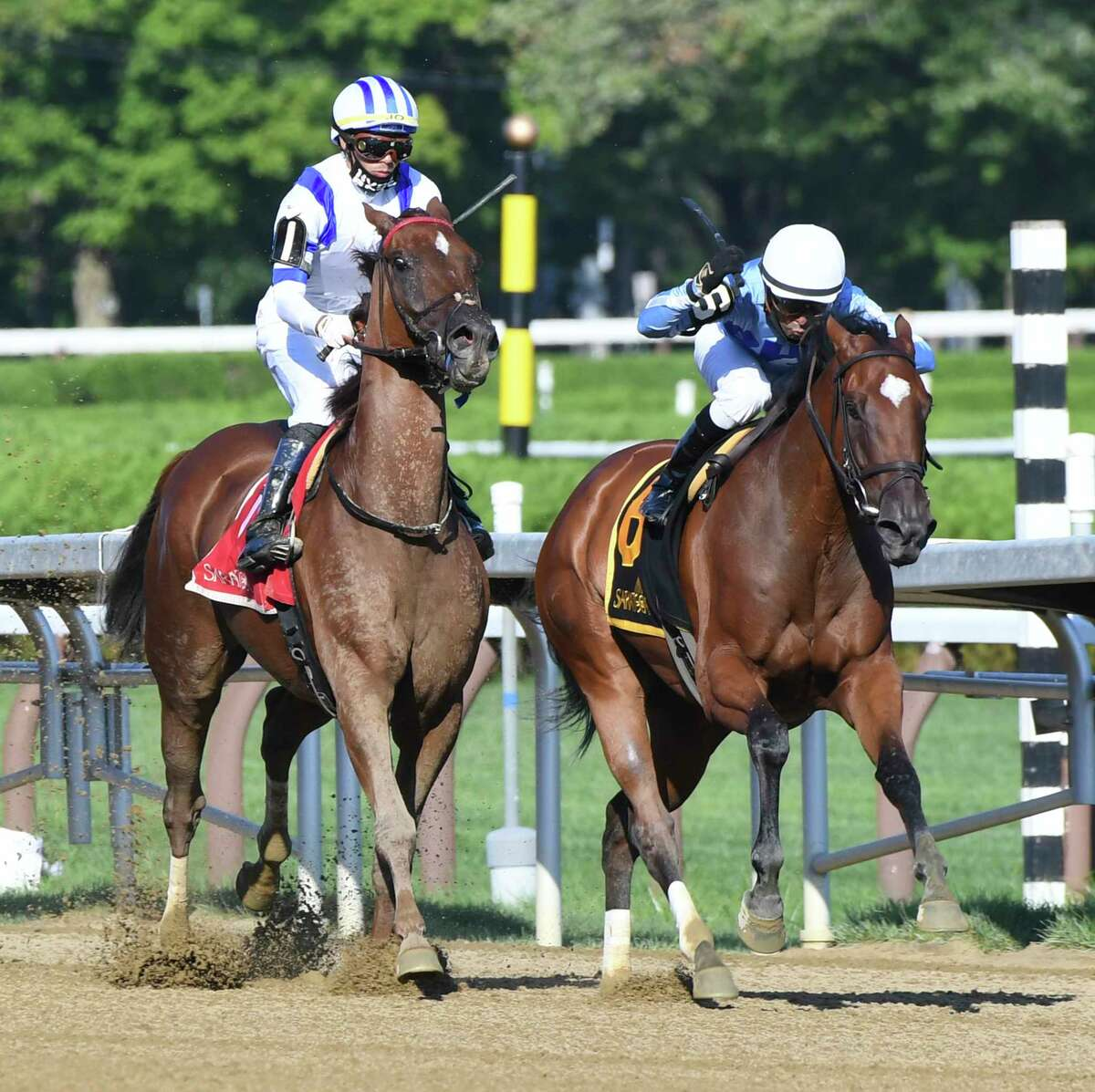 #6 Newly Minted with jockey Jose Lezcano moves away from race favorite #1 Ratajkowski with jockey Jose Ortiz and goes on to win the 17th running of The Union Avenue Thursday Aug.13, 2020 at the Saratoga Race Course in Saratoga Springs, N.Y. Photo by Skip Dickstein/Special to the Times Union