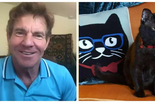 Houston's Dennis Quaid just adopted a furry friend of the same name from the Lynchburg Humane Society in Virginia.