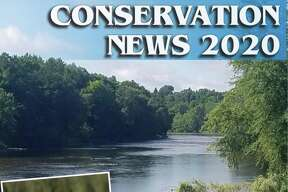 Conservation News 2020