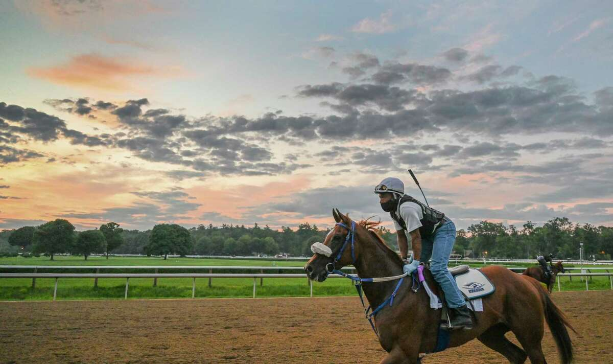 Swiss Skydiver who will make her next start in the Alabama on Saturday gets her exes case in this morning Friday Aug.14, 2020 at the Saratoga Race Course in Saratoga Springs, N.Y. Photo by Skip Dickstein/Special to the Times Union