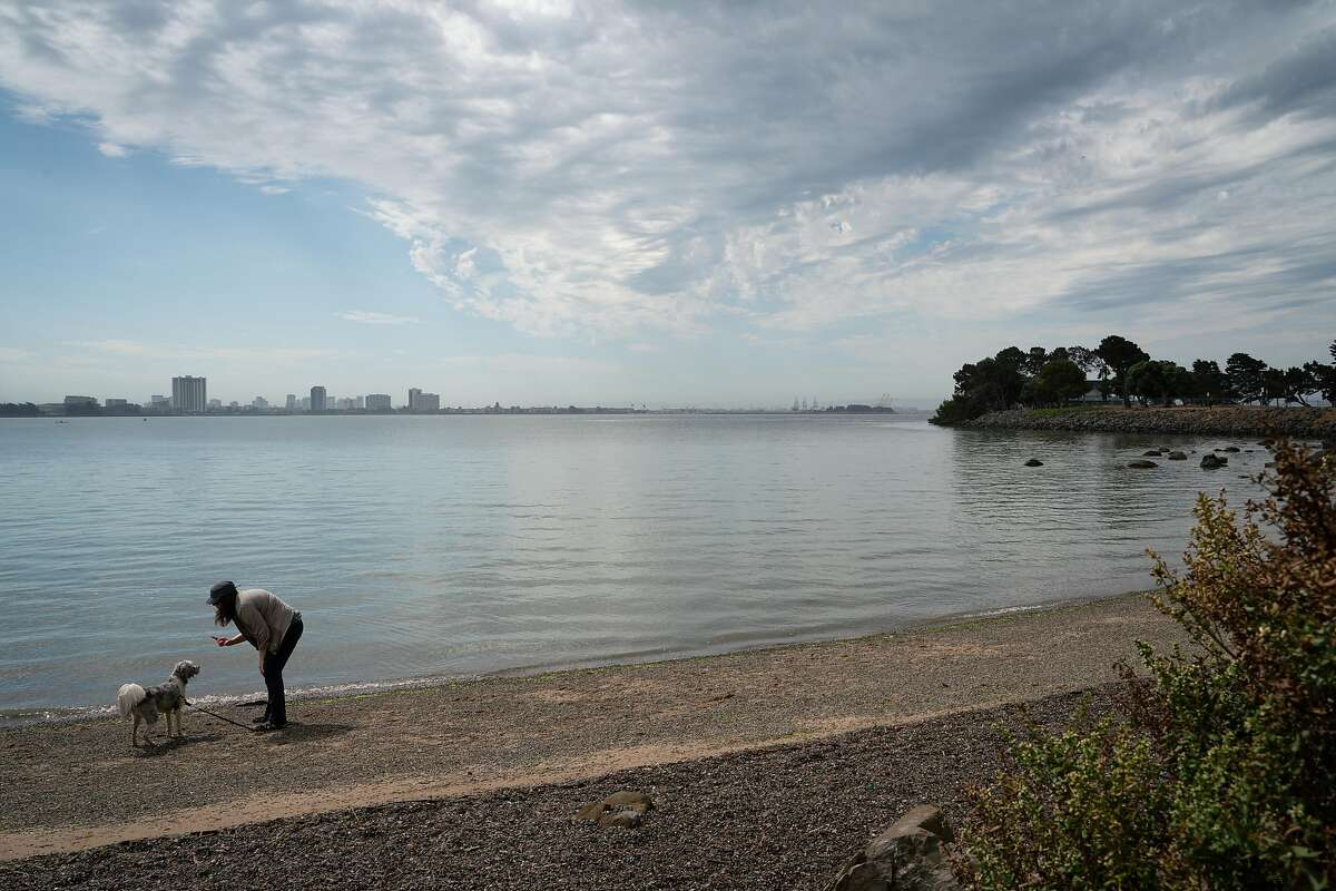 Sarah E., of Berkeley, plays with her dog at the marina in Berkeley on Sunday, August 16, 2020.