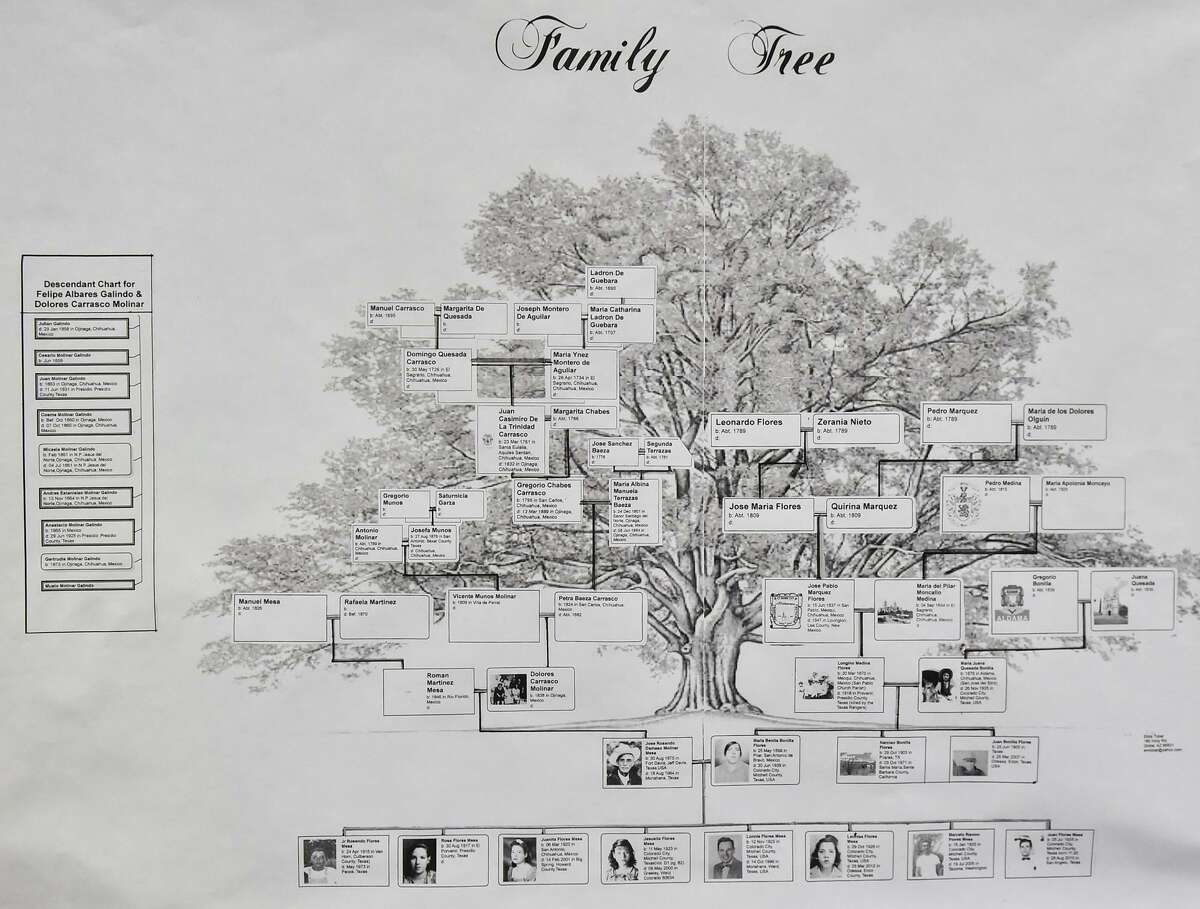 Through September, Ancestry.com is available to patrons from home with their Wilton Library card.