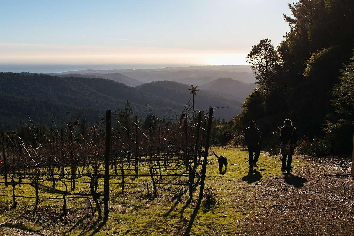 Guest walk around the vineyard overlooking the Pacific Ocean at Loma Prieta Winery in Los Gatos on Sunday, December 3, 2017.