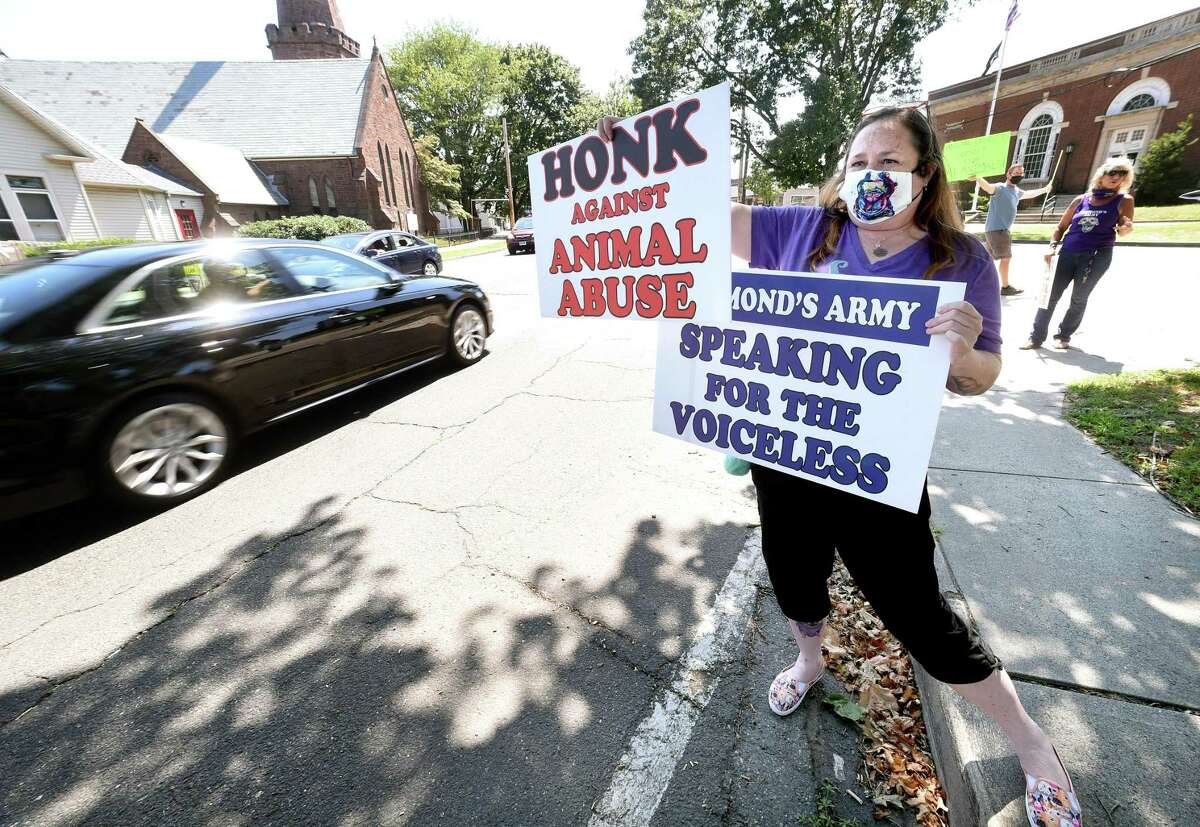 Maria Longo of Branford protests in front of Superior Court in Milford Aug. 17, 2020, to elevate charges against Nazareno Goldston to a felony for allegedly kicking a dog to death.