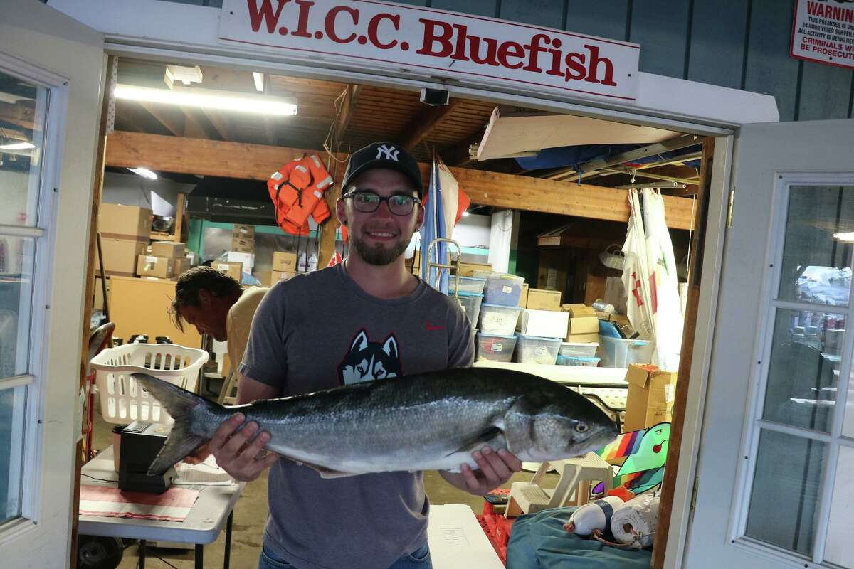 """""""The WICC 600 Spector Eye Care Greatest Bluefish Tournament on Earth"""" takes place Aug. 29 and 30 on Long Island Sound. The angler who catches the heaviest bluefish wins $25,000, but there's $40,000 in prizes total, so even if your fish isn't the heaviest, you still might win some cash. Last year the winning fish weighed 21.29 pounds. This tournament, which attracts thousands of participants, is in its 38th year."""