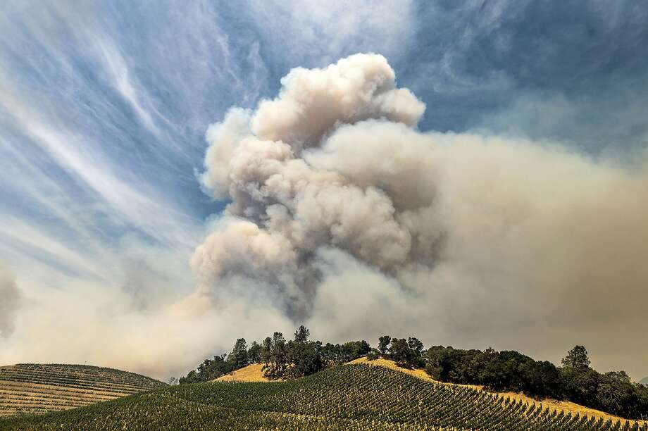 A plume rises over a vineyard in unincorporated Napa County as the Hennessey Fire burns on Tuesday, Aug. 18, 2020. Fire crews across the region scrambled to contain dozens of blazes sparked by lightning strikes as a statewide heat wave continues. (AP Photo/Noah Berger) Photo: Noah Berger, Associated Press