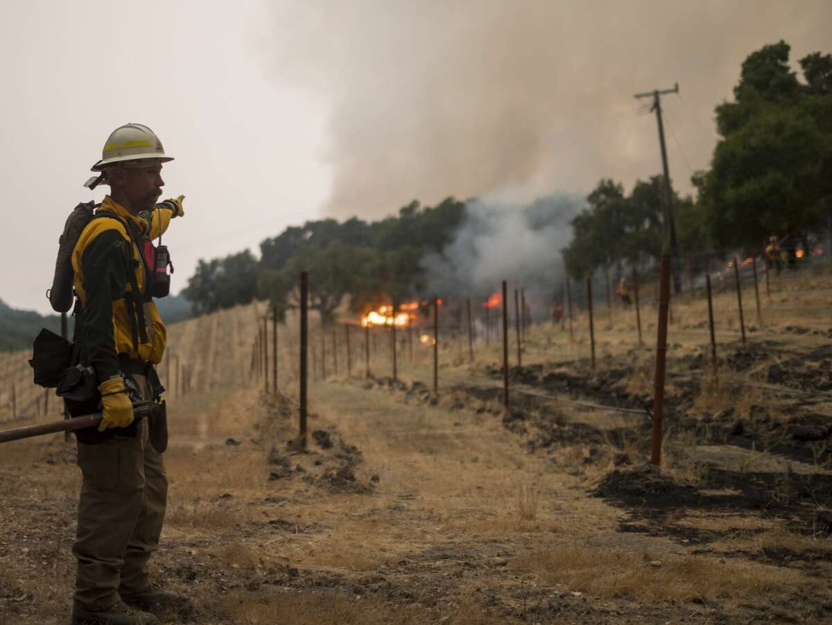 Trees near a vineyard on Cachagua Road burn in the Carmel Fire near Carmel Valley, Calif., Tuesday, Aug. 18, 2020.