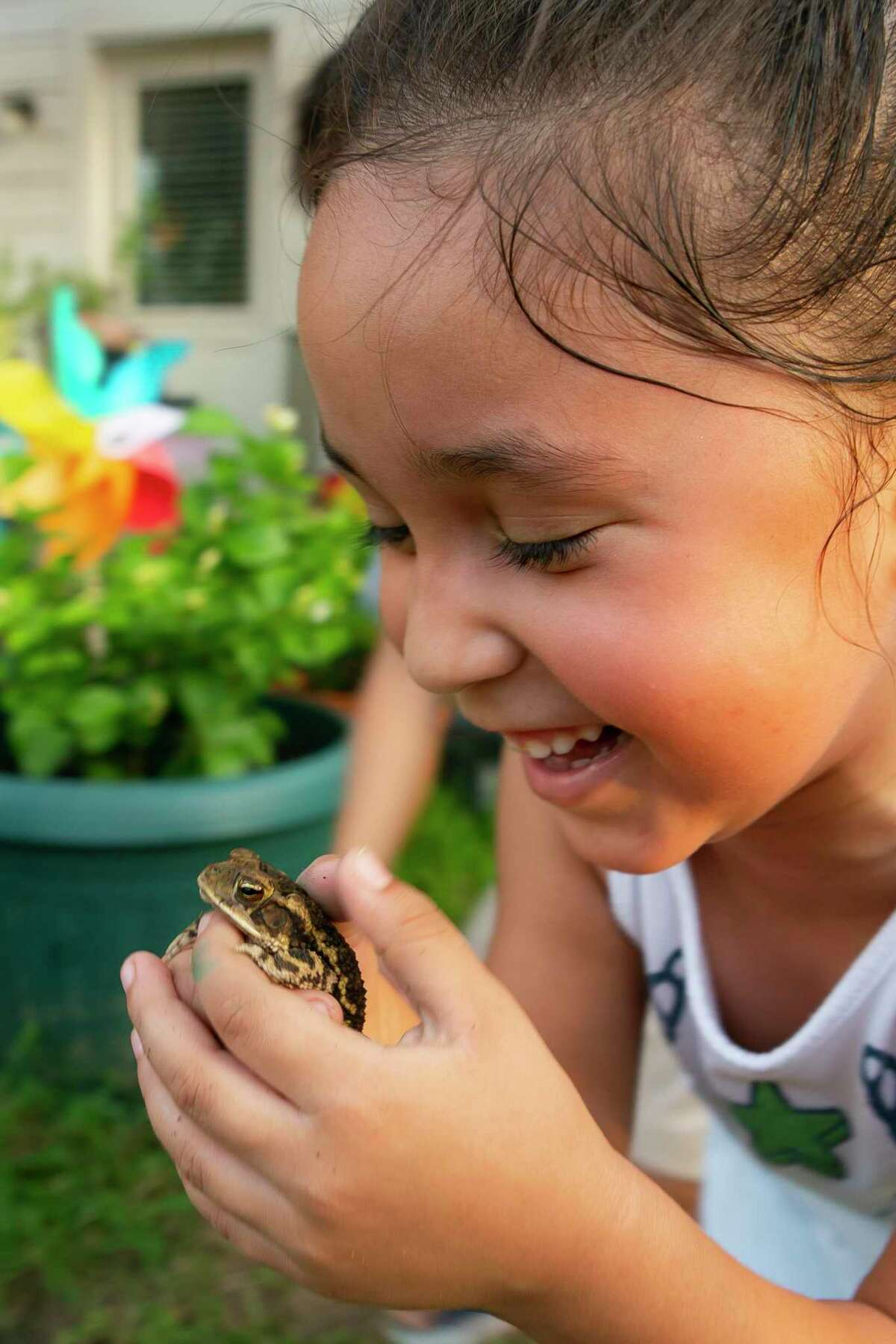 Eliza Burke, 6, holds a toad she caught with her brother in their backyard.