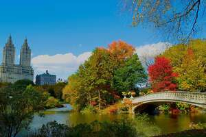 "Calming the Concrete Jungle:   Even  New York City  exudes a peaceful tranquility  once fall hits . Add ""Seeing Central Park in autumn"" to your bucket list ASAP."
