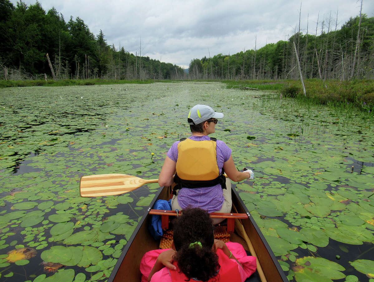 Water lillies greet paddlers Gillian Scott and her daughter between Fifth and Sixth Lake in the Essex Chain. (Herb Terns / Times Union)