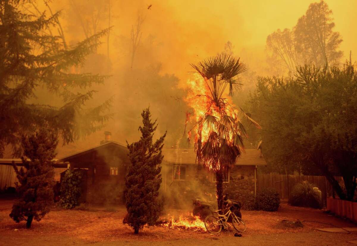 A palm tree and shrubs burn as flames approach a home as the Hennessey fire continues to rage out of control near Lake Berryessa in Napa, California on August 18, 2020. In the late hours of August 18, the Hennessey fire merged with at least 7 fires and is now called the LNU Lightning Complex fires. Dozens of fires are burning out of control throughout Northern California as fire resources are spread thin.