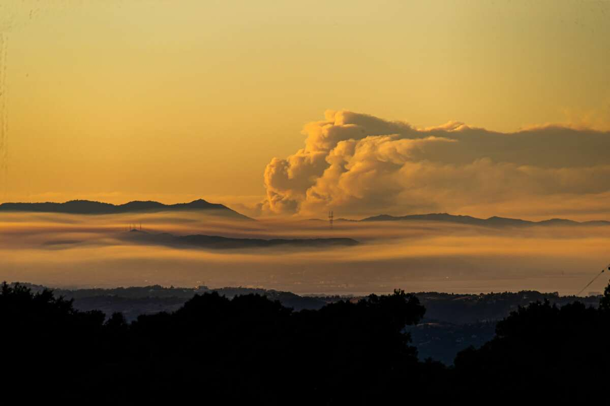 Photo taken on Aug. 19, 2020 at the Windy Hill Open Space Preserve of San Mateo County shows the dense smoke of wildfires in San Francisco Bay Area, California, the United States.