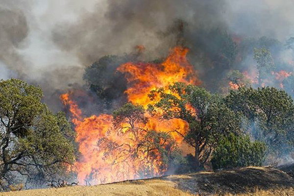 Raging Bay Area wildfires now among top-5 largest in California history