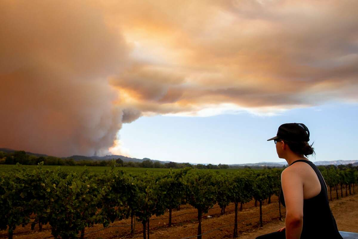 Cristina Flores of Windsor watches as large plumes of smoke from the Walbridge Fire in Sonoma County wafts over grapevines from the ridge along Wallace Creek Road west of Healdsburg, Calif. seen from Eastside Road Thursday, August 20, 2020. The Walbridge Fire stands at 14,000 acres and is 0% contained as of Thursday.