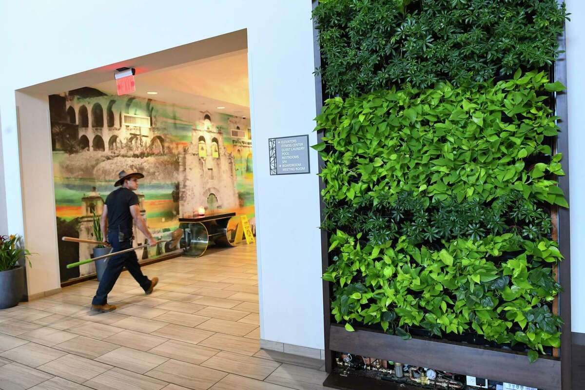 While large green wall systems like this one are popular in commercial properties, home installations are usually much smaller.