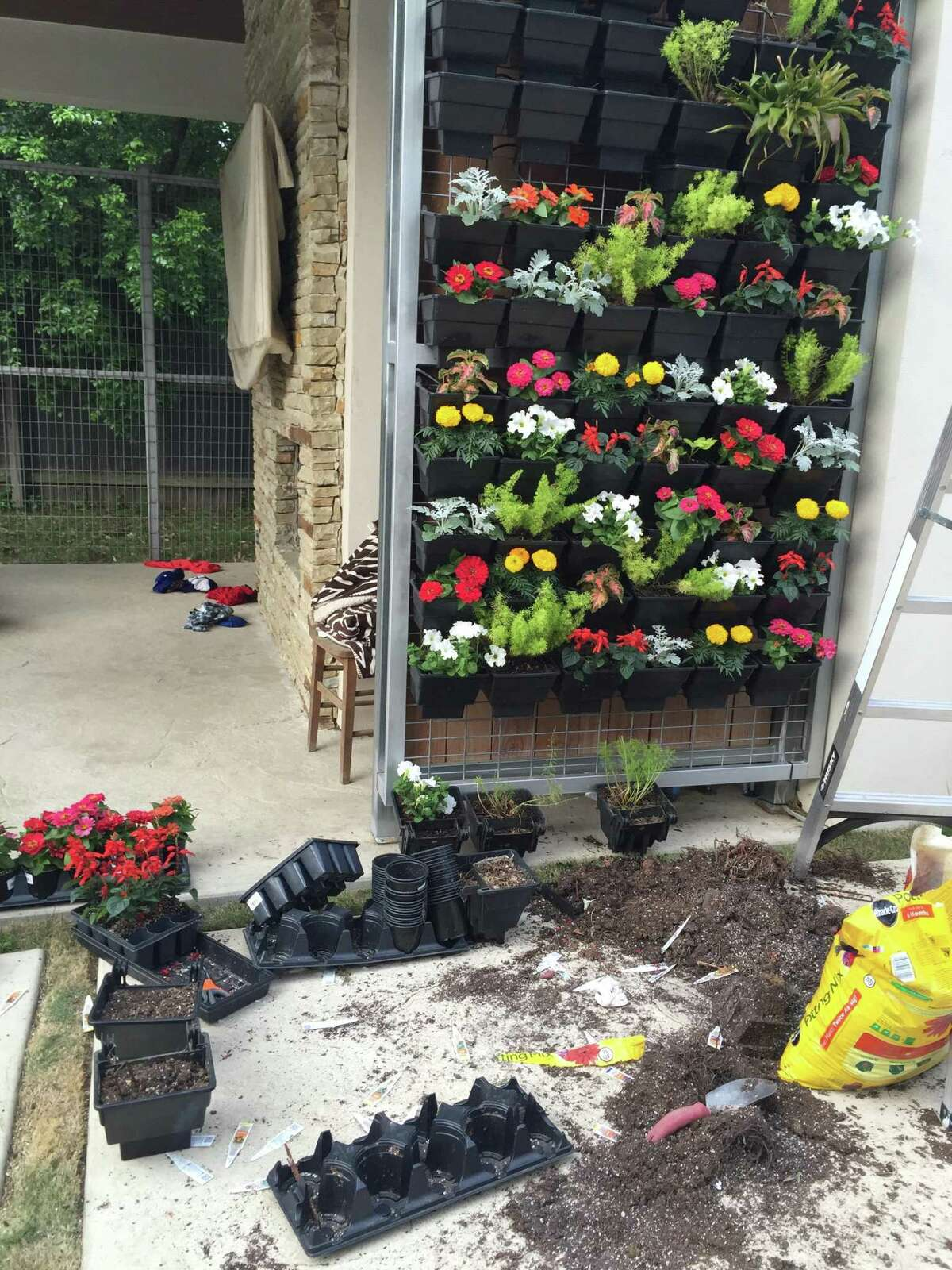 Scott and Sherolene Barr maintain their outdoor green wall themselves, replacing spent flowers as necessary.