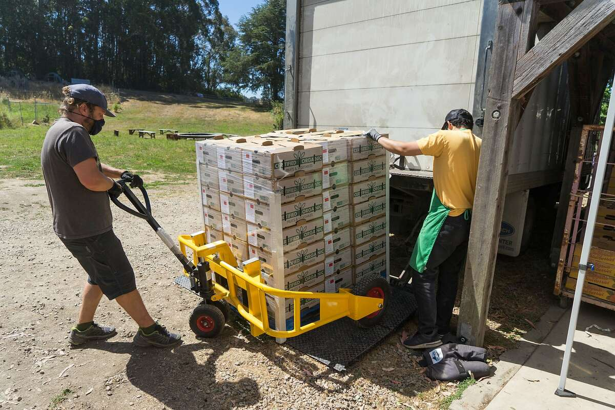 Adam Center, left, and Christopher Naranjo load CSA boxes into a truck Pie Ranch in Pescadero, Calif. on Wednesday, June 17, 2020. Farms that normally sell their produce to restaurants are instead distributing their food to low-income families through CSA boxes.