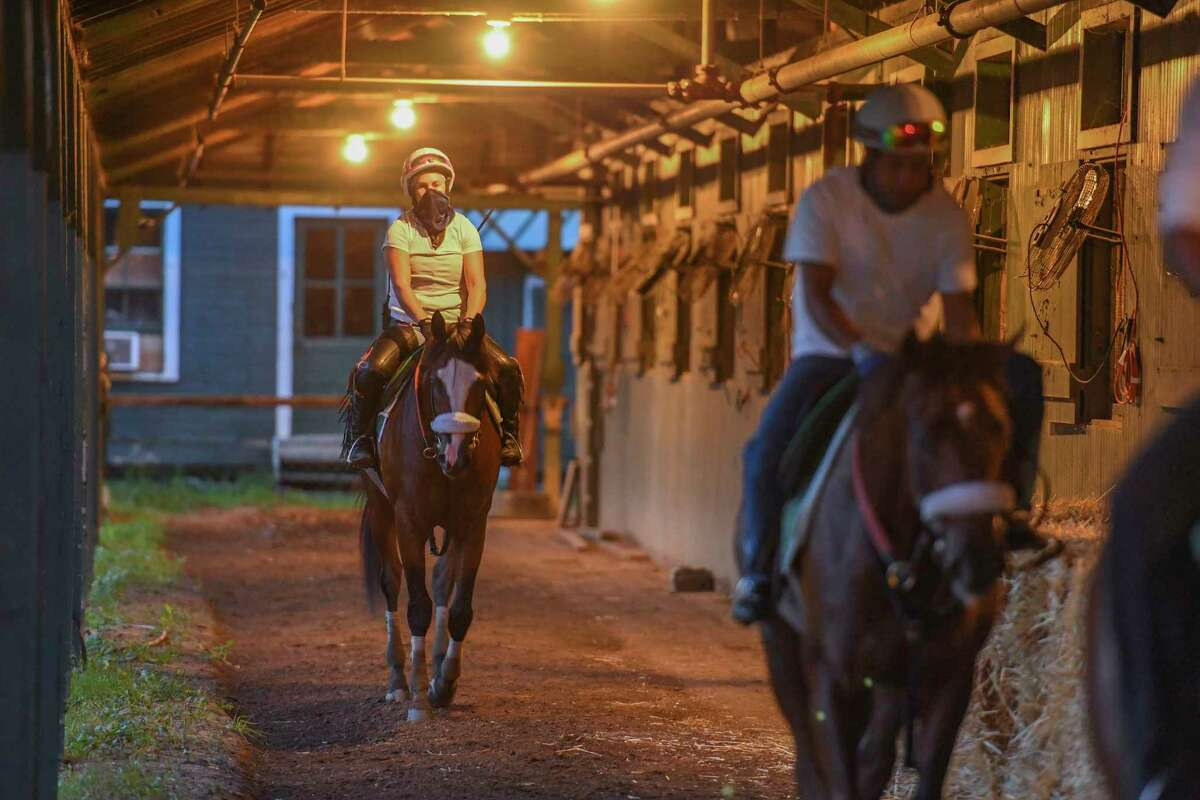 Tiz the Law with exercise rider Heather Smullen aboard cools out in the shed row after one of his final preparatory works before the Kentucky Derby Sunday Aug.23, 2020 at the Saratoga Race Course in Saratoga Springs, N.Y. Photo by Skip Dickstein/Special to the Times Union