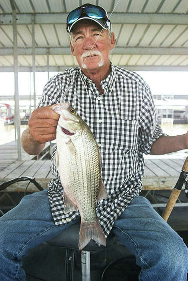 Anglers are finding white bass action heating up this month at Illinois Corps of Engineer lakes. Photo: Curt Hicken / For The Telegraph